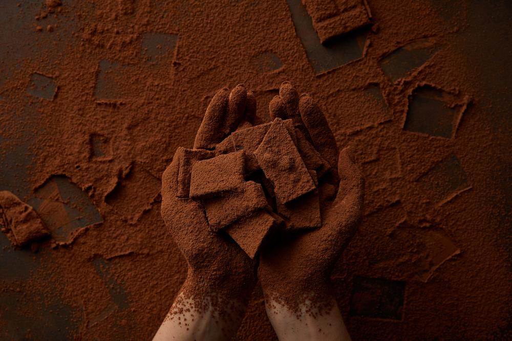 Лучший какао-порошок